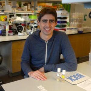 Matthew Laye PhD